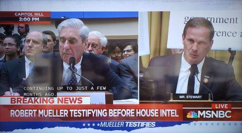 MuellerHearing