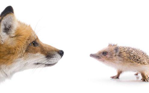 fox and hedgehog
